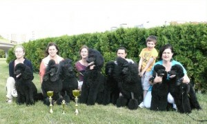 z-cerneho-panstvi-cerven-2011.jpg