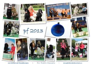 pf2013-fullres.jpg